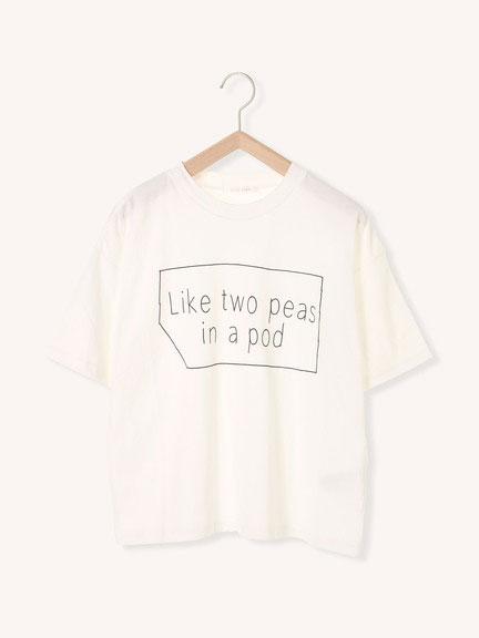 sm2カリフォルニアコットンロゴptTシャツ